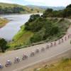 Бельгийская федерация велоспорта хочет ввести желтые и красные карточки