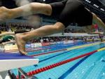 В 2020 году в Сочи может пройти чемпионат мира по плаванию